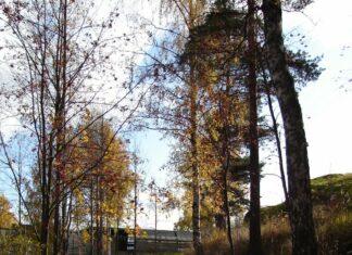Siilitien metroaseman lähellä oleva muinaistie, kuva Raimo Mäkelä